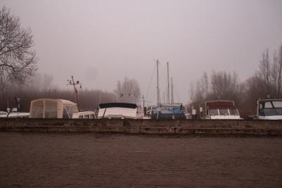 elsen-43-van-43