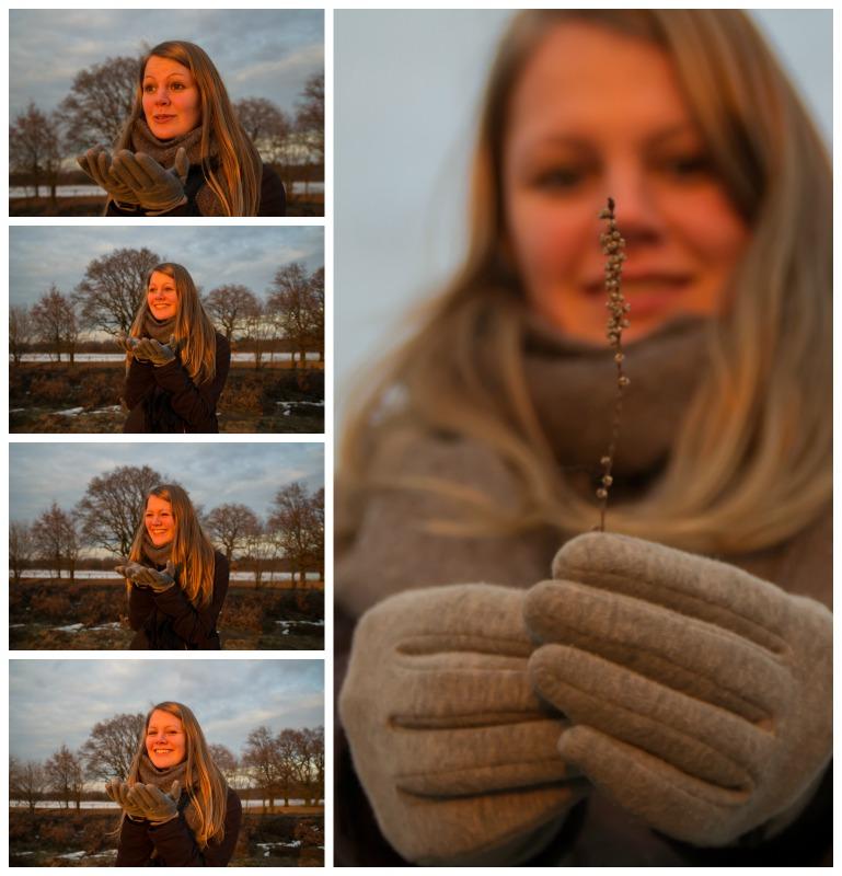 collage_ginkelseheide_zonsondergang_middel