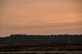 ginkelseheide_zonsondergang-64-van-69