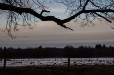 ginkelseheide_zonsondergang-7-van-69